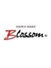 ブロッサム 東武練馬店(Blossom)