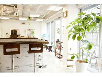 ヘアースタジオ アン(Hair studio un)(神奈川県川崎市多摩区/美容室)