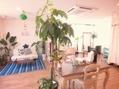 グリーンピース ヘアルーム(green peace hair room)(美容院)