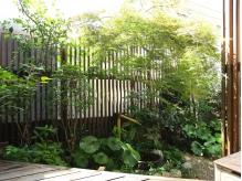 緑あふれる庭に心も癒されます