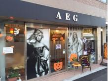 AEGの詳細を見る