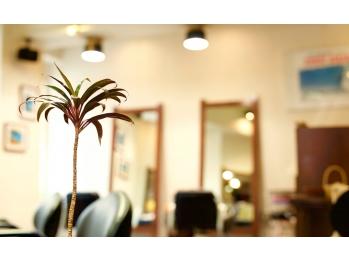 ヘアスタジオ クー(Hair Studio XYY)(東京都北区/美容室)