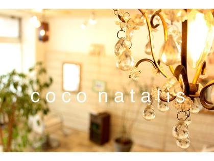 ココ ナタリス(coco natalis) image
