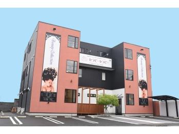 ビューティーコレクション 静岡北店