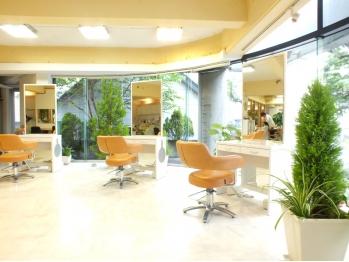 美容室サラサ 白石店