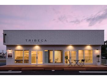 トライベッカ ビューティアンドスパ 水戸(TRIBECA BEAUTY&SPA)(茨城県水戸市/美容室)