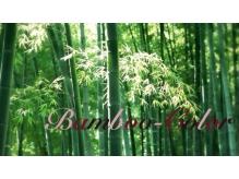 バンブーカラー 川越店(Bamboo Color)