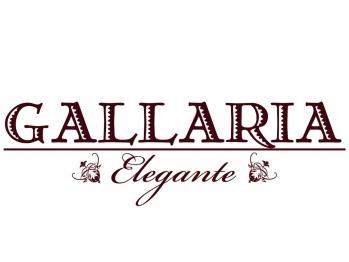 ガレリアエレガンテ 稲沢店(GALLARIA Elegante)