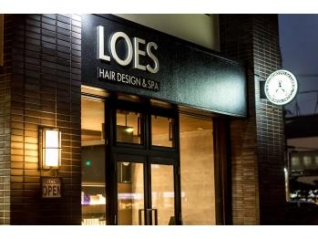 ロイズ ヘアデザイン アンド スパ(LOES)