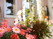 オーナーがガーデニングで育てた、お花や植物で彩られて☆