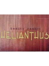 エリアントス(HELIANTHUS)