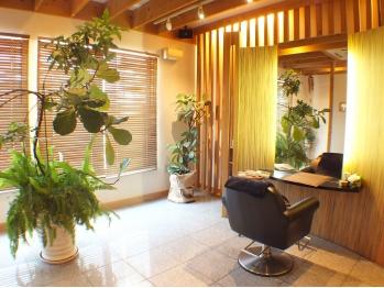 グレイスヘアラウンジ(grace hair lounge)(宮崎県宮崎市/美容室)