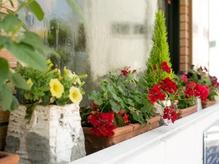 季節のお花でお客様をお迎えいたします