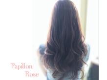 パピヨンロゼ(Papillon Rose)
