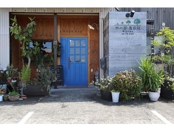 木の芽美容院(鹿児島県出水市/美容室)