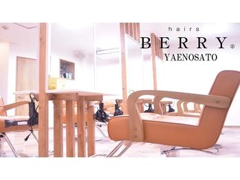 ヘアーズベリー 八戸ノ里店(hairs BERRY)(大阪府東大阪市)