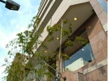 ビルの2Fにあるサロン。この外観が目印です!