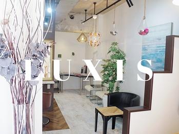 デザイナーズヘアー ラグジス(Designers hair LUXIS)(神奈川県海老名市/美容室)