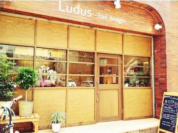 ルードゥス ヘアーデザイン(Ludus hair design)(東京都大田区/美容室)