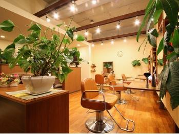 グランツ デザイナーズサロン(GLANZ Designer's Salon)(神奈川県横須賀市/美容室)