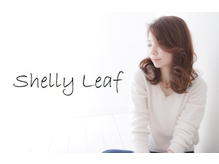 シェリーリーフ(Shelly Leaf)の詳細を見る