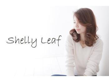 シェリーリーフ(Shelly Leaf)(東京都八王子市)