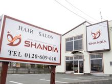 シャンディア(SHANDIA)
