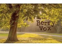 ヘアーメイク ベリーボックス(Hair make Berry Vox)