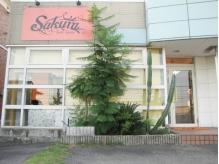 サクラ 羽束師店(SAKURA)の詳細を見る