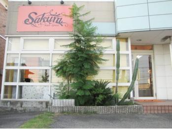 サクラ 羽束師店(SAKURA)(京都府京都市伏見区/美容室)