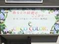 ココカラー(COCO COLOR)
