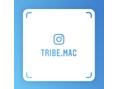 トライブ 本店(TRIBE)