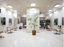 店内は観葉植物が多数置いてある、癒し空間。