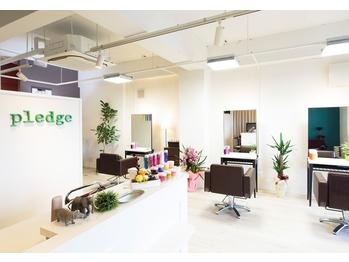 プレッジ(pledge)(岡山県岡山市北区)