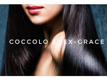 コッコロ ヘアー ルーム 桂本店(Coccolo Hair Room)(京都府京都市西京区/美容室)