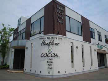 ココア ヘアー(COCOA HAIR)