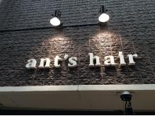 アンツヘアー(ants hair)