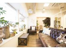 沢山の緑に囲まれて、リラックスできるカフェのような店内