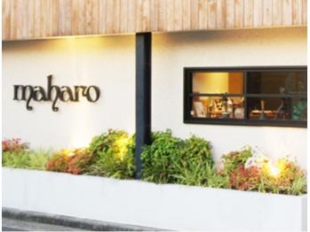 マハロ (maharo)