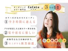 ココル 西新井(CoCoLu)の詳細を見る