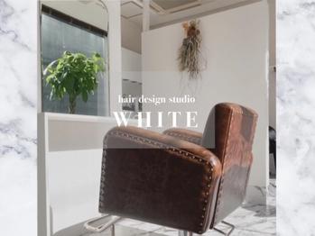 ホワイト(WHITE)(熊本県熊本市)