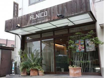 アルニコ ヘア プロデュース ALNICO HAIR PRODUCE image