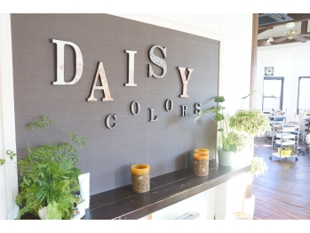デイジーカラーズ(Daisy Colors)