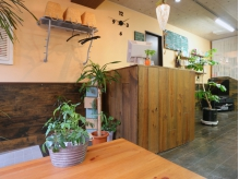 木のぬくもりと緑があふれる店内は居心地の良い空間です。