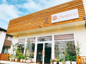 サンテリア(Sunteria)(福島県福島市/美容室)