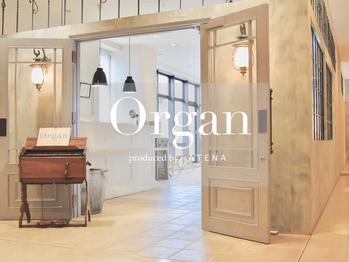 オルガン(Organ)(熊本県熊本市/美容室)