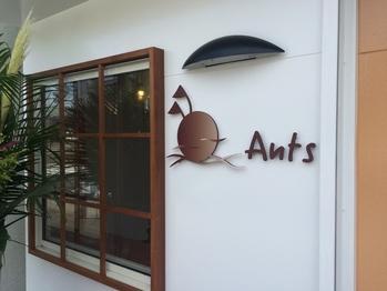 アンツ 前原店(Ants)(福岡県糸島市)