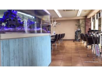 美容室メデューサ白木原店(福岡県大野城市/美容室)