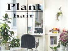プラントヘアー(Plant hair)