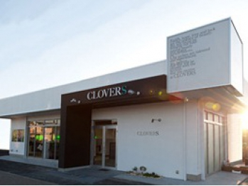 クローバーズ(CLOVERS)